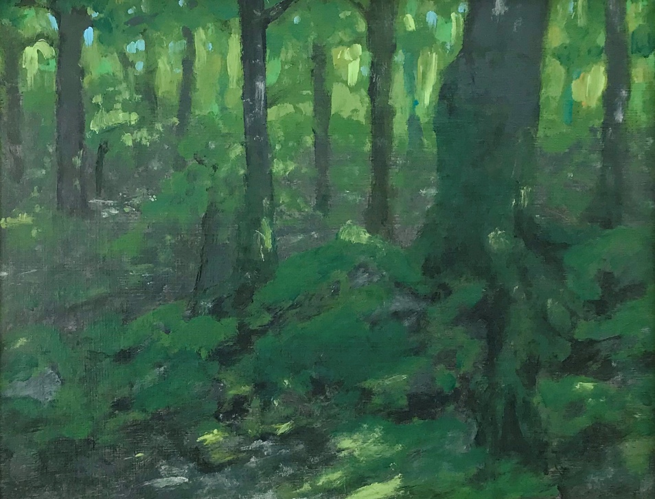 Painting of a sun dappled forest floor in early summer by MJ Seal